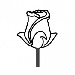 MOLDE PVC PIRULETA ROSA SANT JORDI 55x45