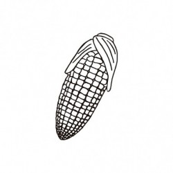 M. PVC MAZORCA 99x41x42mm (i) MD