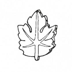 M. PVC HOJAS 42X37