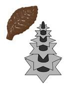 Comprar Pvc Plantas para pastelería panadería chocolatería